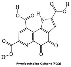 PQQ (Pyrroloquinoline Quinone)
